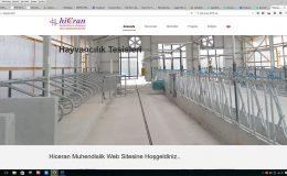 Hiceran Construction Web Site Design